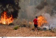 Τι δείχνουν οι έρευνες για τα αίτια των πυρκαγιών σε Ελεκίστρα και Δροσιά