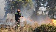 Φωτιά κοντά στην Αγία Άννα Γούμερου Ηλείας (φωτο+video)
