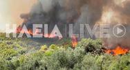 Ηλεία: Μαίνεται το μέτωπο στην Αρχαία Ολυμπία - Εκκενώθηκαν 5 οικισμοί (φωτο+video)