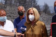 Η Φώφη Γεννηματά περιόδευσε στις πληγείσες, από τις πρόσφατες πυρκαγιές, περιοχές της Αχαΐας (φωτο)