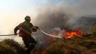 Νέα φωτιά εκδηλώθηκε στην Ηλεία - Στην περιοχή Μιράκα
