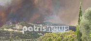 Ηλεία: Η μεγάλη πυρκαγιά καίει σπίτια στο Δήμο Αρχαίας Ολυμπίας (φωτο+video)