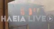 Ραγίζουν καρδιές οι εικόνες από τη φωτιά στην Ηλεία - Κάηκαν σπίτια (φωτο+video)
