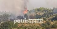 Φωτιά Αρχαία Ολυμπία: Αναζωπύρωση στη τοποθεσία Γαλανή (φωτο)