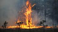 Η κλιματική αλλαγή προκαλεί τις πυρκαγιές που κατακαίνε τη Σιβηρία