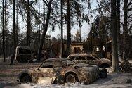 Φωτιές - Οι προτάσεις του ΣΥΡΙΖΑ για τον αγροτικό κόσμο και το φυσικό περιβάλλον