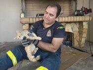 Αγρίνιο: Πυροσβέστες απεγκλώβισαν και έσωσαν γατάκι (φωτό)