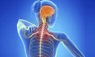 Πολλαπλή Σκλήρυνση - Τα 4 συμπτώματα που προηγούνται της διάγνωσης