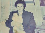 Πάτρα: Θλίψη για τη συνταξιούχο δασκάλα Μαρία Αγγελακοπούλου