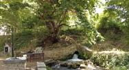 Πηγές Αγίου Γεωργίου Πρέβεζας - Ένας χώρος αναψυχής στην Ήπειρο (video)