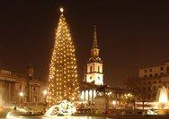 Δείτε τα καλύτερα Χριστουγεννιάτικα δέντρα του κόσμου (pics)