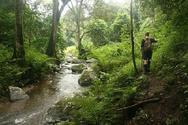 Υπάρχει ένα παραδεισένιο μέρος πολύ κοντά στην Πάτρα που ζουν... νεράιδες!