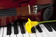 Πάτρα: Συναυλία με έργα για βιολί και πιάνο στα πλαίσια του 'Μουσικού Μαΐου'