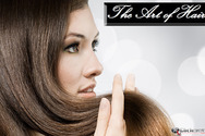 Galatis Luxury Hair Salons