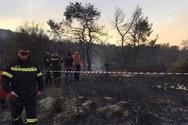 Ένας νεκρός, μία αγνοουμένη και δύο τραυματίες από την φωτιά στους Αγίους Θεοδώρους (video)