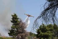 Πολύ υψηλός και πάλι σήμερα ο κίνδυνος πυρκαγιάς στην Δυτική Ελλάδα
