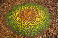 Όταν η φύση δημιουργεί έργα τέχνης (φωτο)