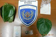 Κατάσχεση ναρκωτικών ουσιών από τις Λιμενικές Αρχές (pics)