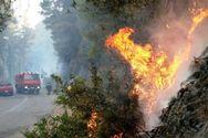 Ηλεία: Χειροπέδες σε δύο άτομα για τις πυρκαγιές