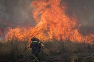 Αχαΐα - Φωτιά ξέσπασε σε δασική έκταση στη Ζήρια