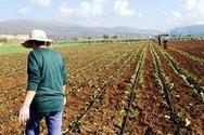 ΟΠΕΚΑ: Επιδόμα 1.000 ευρώ σε πολύτεκνες αγρότισσες μητέρες