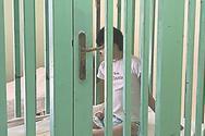 Κραυγή αγωνίας για να κλείσει το κολαστήριο στα Λεχαινά με τα κλουβιά