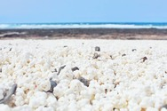 Η παραλία της Ισπανίας με βότσαλα σε σχήμα ποπ κορν
