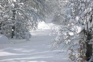 Μερικά στοιχεία που δεν ξέρουμε για το χιόνι