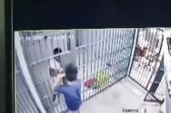 Νεαρός ξεγέλασε αστυνομικό και... δραπέτευσε από τα κρατητήρια (video)