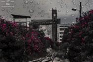 Όταν η βροχή τα κάνει μούσκεμα στην Πάτρα (φωτο)