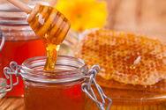 ΕΦΕΤ: Το Ελληνικό μέλι είναι το πολύτιμο δώρο της φύσης στον άνθρωπο