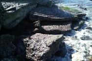 Αχαΐα: Τα μπάζα στην παραλία Καμινίων
