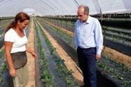 Δυτική Ελλάδα: Χρονιά στήριξης των νέων αγροτών το 2018