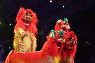 Πάτρα: Καραγκιόζης και Κινέζικος Δράκος έδωσαν τη δική τους νότα στην τελετή λήξης (φωτο)
