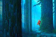 Το απίθανο stop-motion animation «Ο Ευγενικός Κύριος Λινκ», έρχεται στους κινηματογράφους!