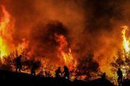 Πυρκαγιά στο Κουνουπέλι: Οι πυροσβέστες έσωσαν το δάσος της Στροφυλιάς - Τι δείχνουν οι έρευνες