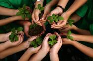 Πάτρα: Δεντροφύτευση από το 2ο Ειδικό Δημοτικό Σχολείο