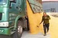 Εργαζόμενοι που το έχουν... τερματίσει (video)