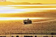 Ταξίδι στην… χρυσαφένια θάλασσα του Πατραϊκού