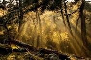 Πάτρα - Περπατώντας στο ρέμα της Νερομάνας