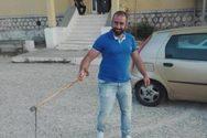 Δυτική Ελλάδα: Φίδι αναστάτωσε εκλογικό τμήμα σε χωριό στο Ξηρομέρι