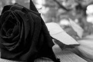 Σύλλογος Εθελοντών Αιμοδοτών Κ.Υ.Χαλανδρίτσας: Ψήφισμα για το θάνατο του Γιάννη Λαμπρόπουλου