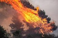 Αχαΐα: 50χρονος συνελήφθη για εμπρησμό στη φωτιά της Τριταίας