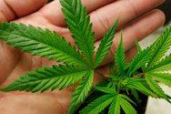 Νέες συλλήψεις για ναρκωτικά στη Δυτική Ελλάδα