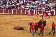 Ξαναρχίζουν οι ταυρομαχίες μετά από δύο χρόνια απαγόρευσης στη Μαγιόρκα
