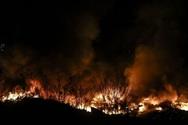 Αχαΐα: Υπό έλεγχο τέθηκε η φωτιά στη Στροφυλιά