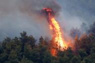 Δυτική Αχαΐα - Εκδηλώθηκε φωτιά στα Τσακώνικα