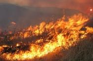 Πολύ υψηλός ο κίνδυνος πυρκαγιάς για την Παρασκευή σε Αχαΐα και Ηλεία