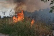 Σε ύφεση η πυρκαγιά στο Διόνυσο