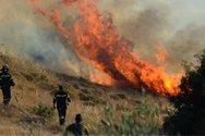 Δυτική Ελλάδα: Σε επιφυλακή οι αρχές για υψηλό κίνδυνο πυρκαγιάς
